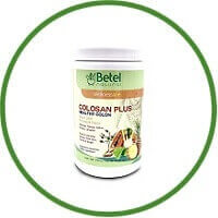 Betel Natural Colosan Plus Colon Cleanse