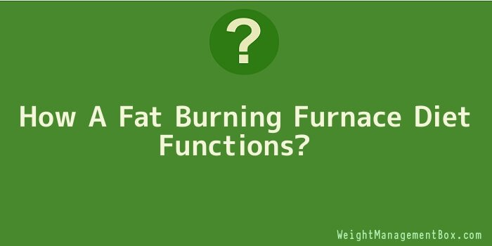 How A Fat Burning Furnace Diet Functions