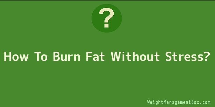 How To Burn Fat Without Stress