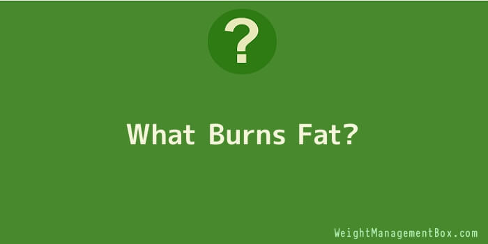 What Burns Fat