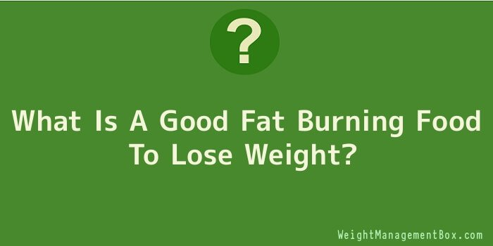 What Is A Good Fat Burning Food To Lose Weight